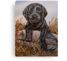 Lab Pup Canvas Print