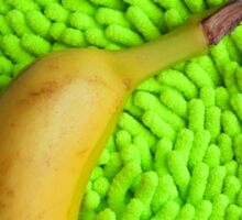 Banana & Lime Sticker