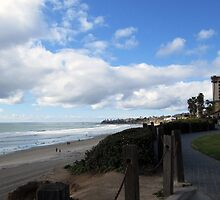 Up of San Diego Beach by Anne Guimond