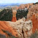 Bryce Canyon National Park,Utah,USA by Anthony & Nancy  Leake