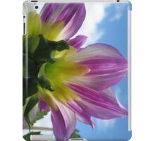 Bursting Colour iPad Case/Skin