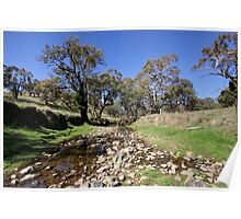 Willawong Creek  Rural NSW  Australia  Poster