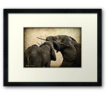 ELEPHANT INTERACTION - THE ELEPHANT - Loxodonta africana - Afrika Olifant Framed Print