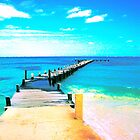 beach dock by lainer15