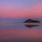 Shade of Purple by JamesA1