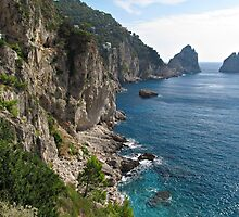 Faraglioni Rock formation on island Capri by kirilart
