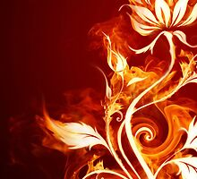 Flames by Joey Kuipers
