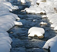 Snowy River view by kirilart