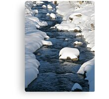 Snowy River view Canvas Print