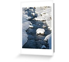 Snowy River view Greeting Card