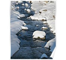 Snowy River view Poster