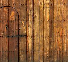 Old Wooden Gate by kirilart