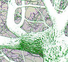 Under a Foil Tree by aprilann