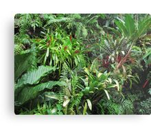 Tropical Forest Flora Background Metal Print