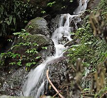 Unnamed falls 1 by SharronS