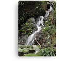 Unnamed falls 1 Canvas Print