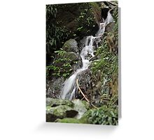 Unnamed falls 1 Greeting Card