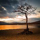 Bonny Banks Sunset by Fe Messenger