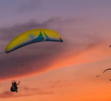 Sunset Gliders by ZeamonkeyImages
