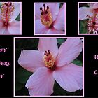 Hibiscus Mother's Day Card 2 by judygal