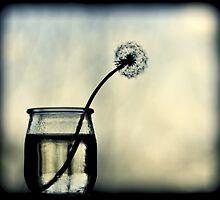make a wish by Ingz