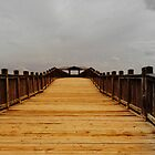 Golden Bridge by artgoddess