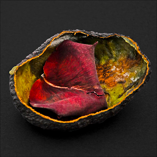 AVOCADO SKIN WITH ROSE PETAL by Thomas Barker-Detwiler