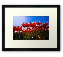 We need Spring and sunshine Framed Print