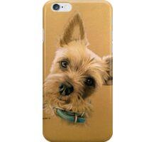 Alfie - the cute little Yorkie! iPhone Case/Skin