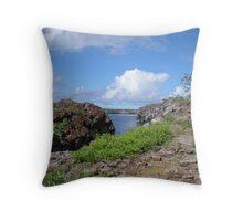 Galapagos Landscape Throw Pillow