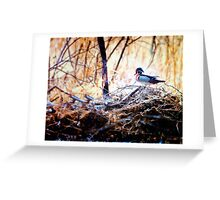 Duck on Some High Water Debri Greeting Card