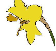 Torn Daffodil by Pengellyn