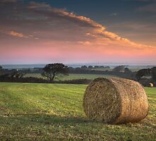 Autumn in Cornwall by Smart Imaging by SmartImaging