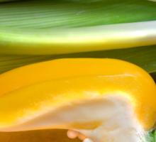 Yellow Pepper Sticker