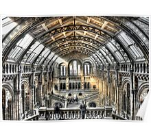 The Natural History Museum London Poster