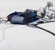 Winter Farm by Walter Quirtmair
