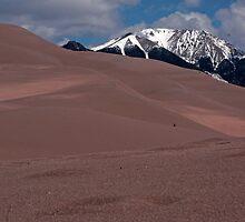 Across the Dunes by Karen Jayne Yousse