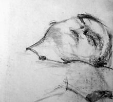 Life Drawing Study 11. by nawroski .