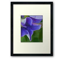 Cobalt Blue Petal Abstract Framed Print