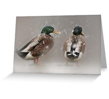 What do you think about this weather? Greeting Card