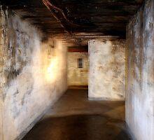 Battery Mishler corridor, lantern well by Dawna Morton