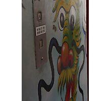 Dragon Graffiti Art Mural Photographic Print