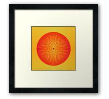 Citrus Sphere Framed Print