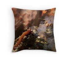Nudi through the looking glass Throw Pillow
