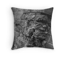 Rugged Brick Wall Throw Pillow