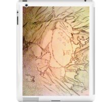Sleeping Totoro iPad Case/Skin