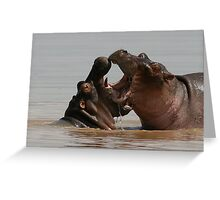 Hippo fight Greeting Card