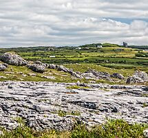 Featured in Northern Landscape – 21 June 2013