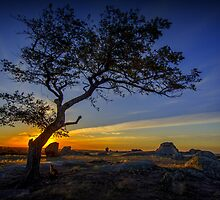 Foxy Sunset - Dog Rocks - Batesford Victoria  2013 by bekyimage