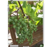 Do Grapes Dream of Becoming Wine?... iPad Case/Skin